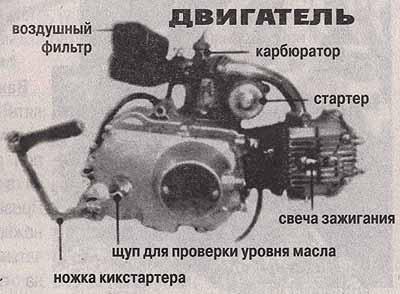 руководство по ремонту двигателя мопеда альфа - фото 11